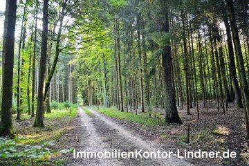 VERKAUFT: Wald, Forstwirtschaftliche Flächen, 89134 Blaustein, Jagd- und Forstwirschaft